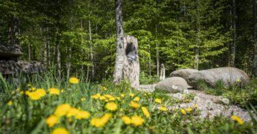 Skulpturlichtung im Mangfalltal