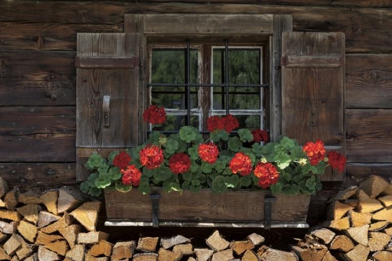 Ab auf die Hütte | Almhütte mit Blumenschmuck