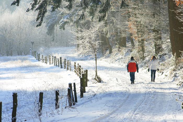 In den Ammergauer Alpen finden Wanderbegeisterte auf rund 70 Kilometern wintertaugliche Touren für jeden Geschmack - vom kleinen Nachmittagsspaziergang bis zur Halbtageswanderung
